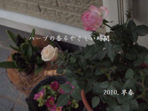 P2090402文字入.jpg