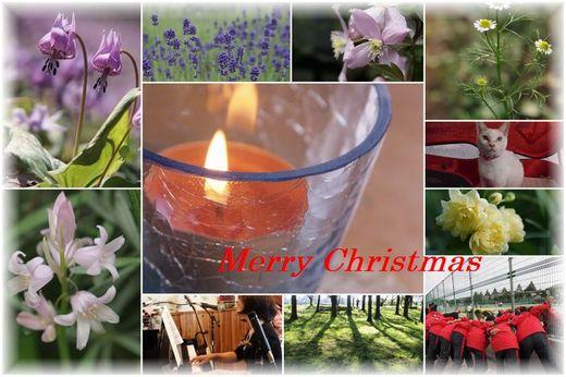 クリスマスカードブログ.jpg