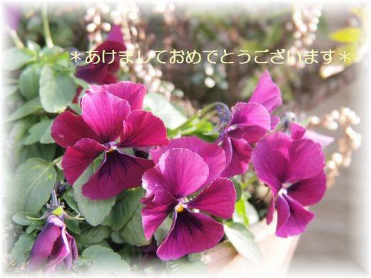 P1078097ブログ.jpg